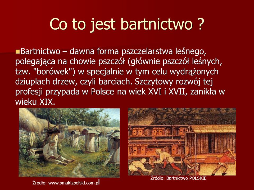 Co to jest bartnictwo
