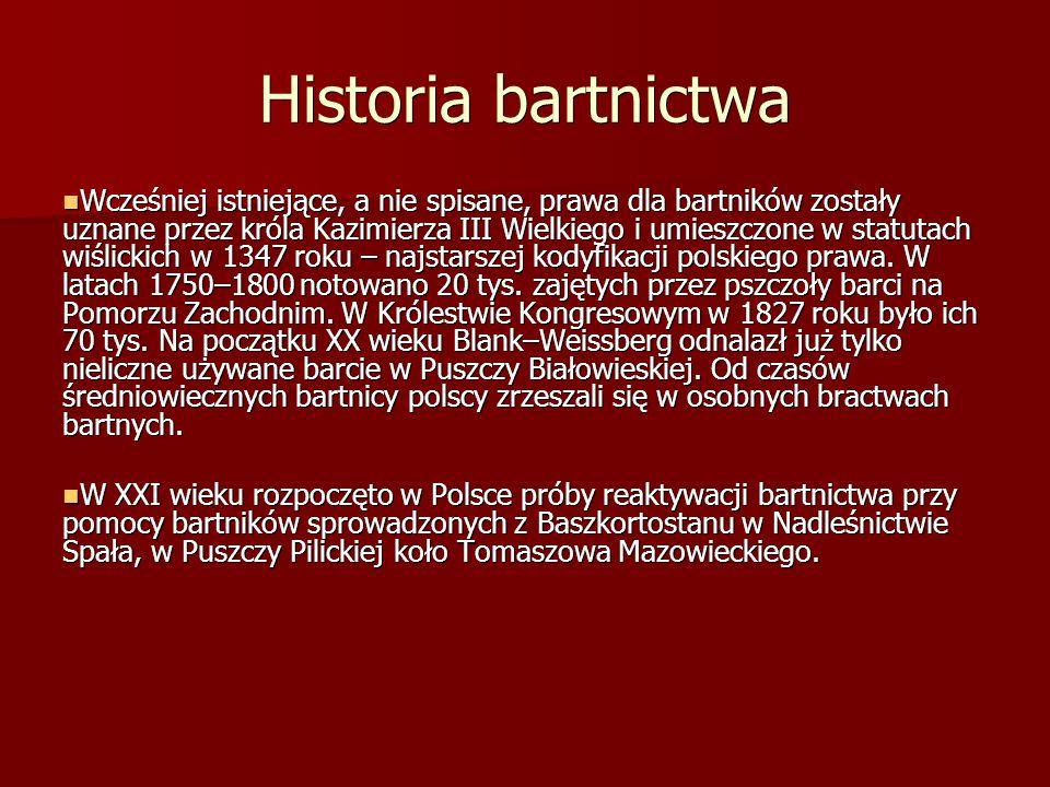 Historia bartnictwa