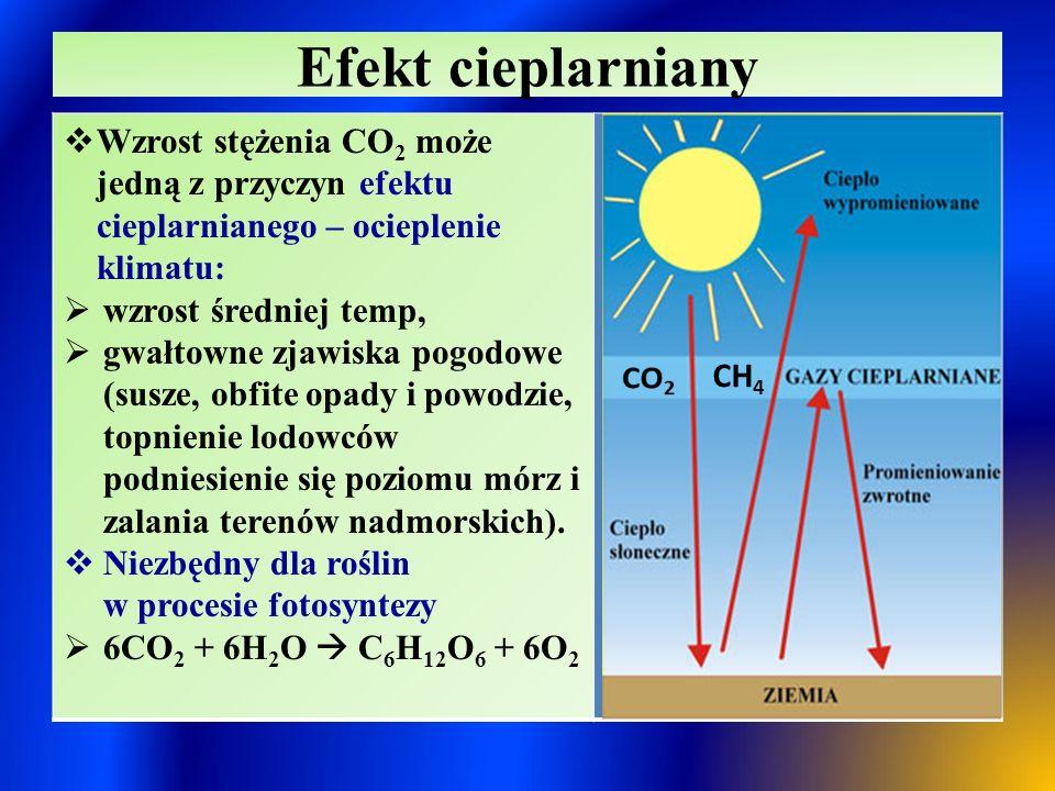 Efekt cieplarniany Wzrost stężenia CO2 może jedną z przyczyn efektu cieplarnianego – ocieplenie klimatu:
