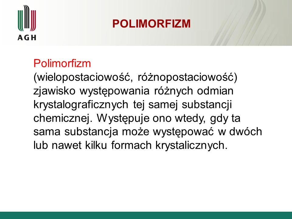 Polimorfizm Polimorfizm.
