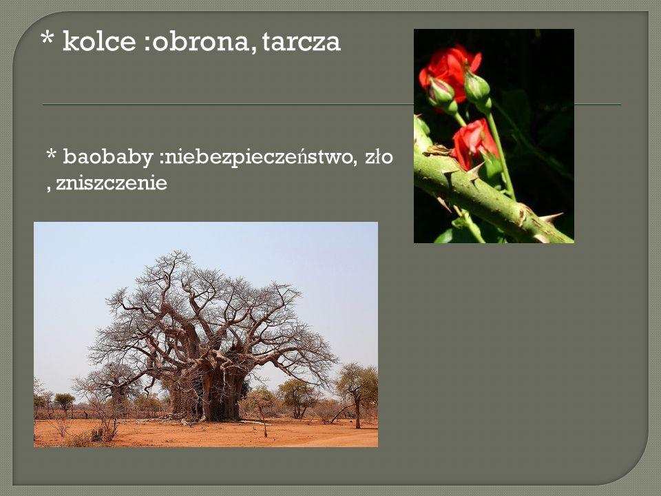 * kolce :obrona, tarcza * baobaby :niebezpieczeństwo, zło , zniszczenie