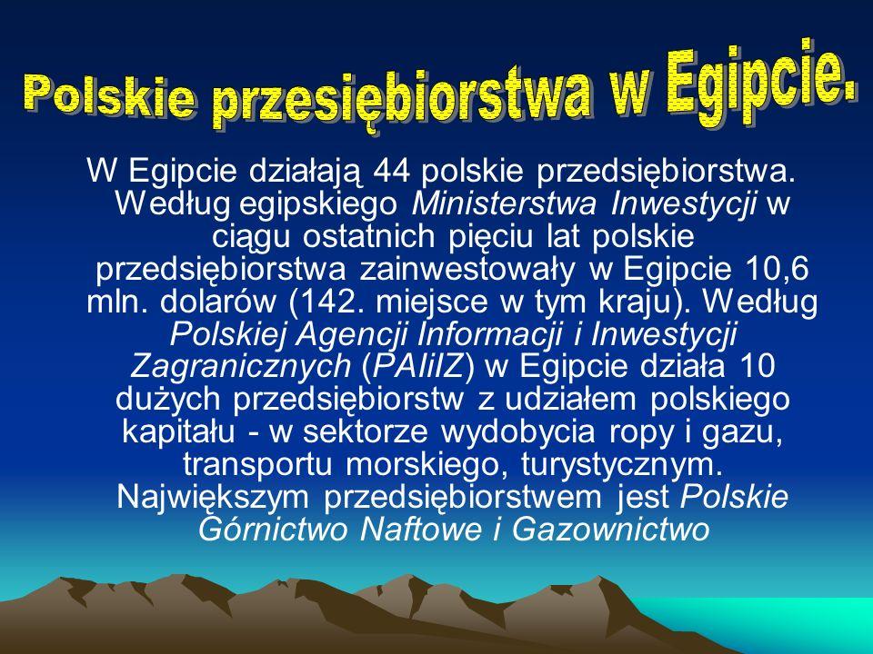 Polskie przesiębiorstwa w Egipcie.