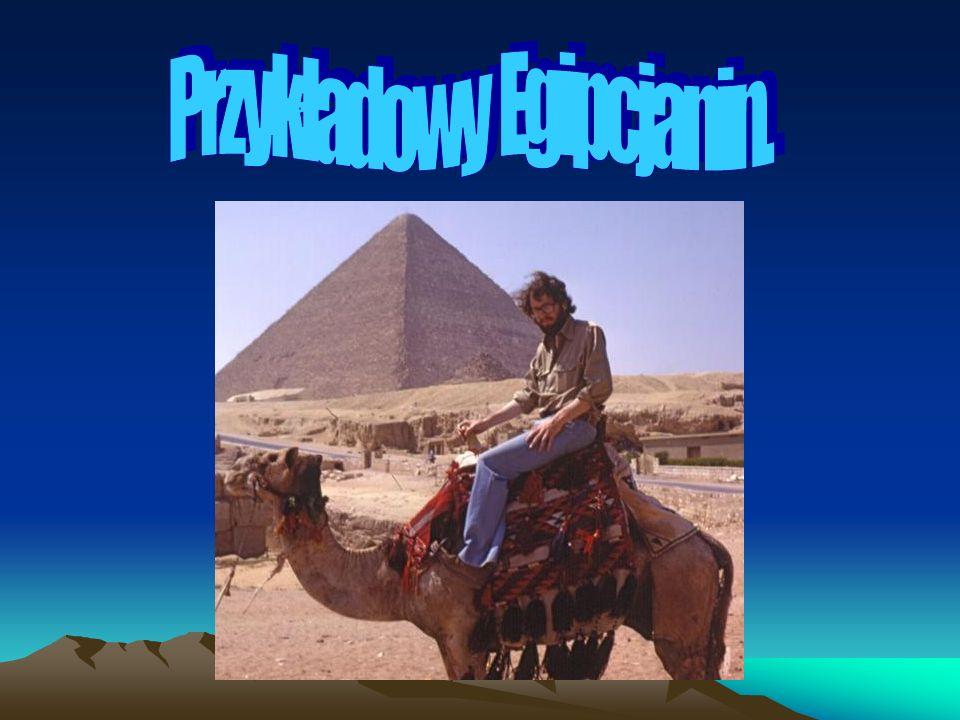 Przykładowy Egipcjanin.