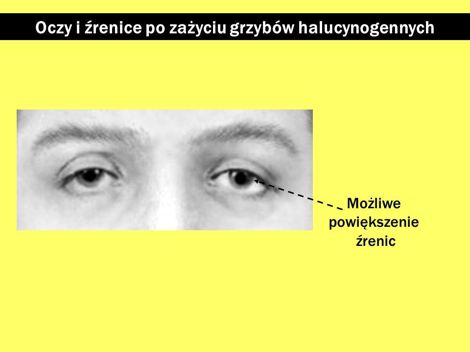 Oczy i źrenice po zażyciu grzybów halucynogennych
