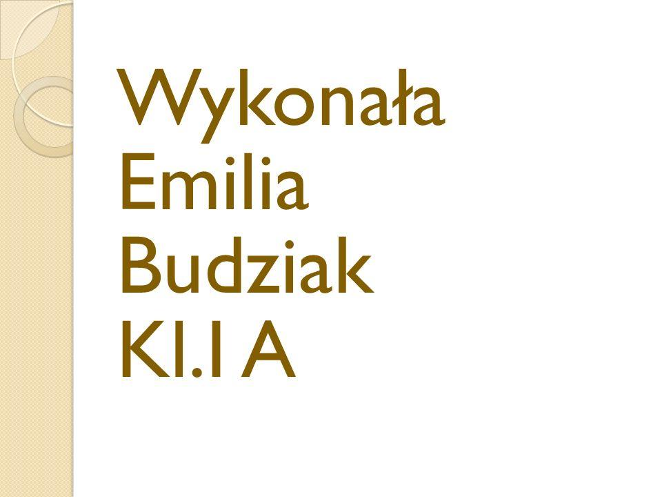 Wykonała Emilia Budziak Kl.I A