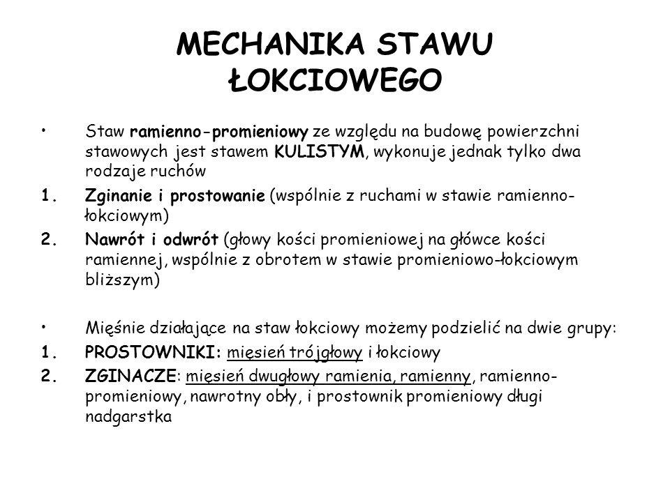 MECHANIKA STAWU ŁOKCIOWEGO