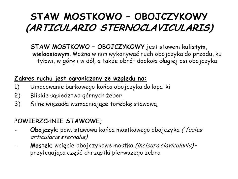 STAW MOSTKOWO – OBOJCZYKOWY (ARTICULARIO STERNOCLAVICULARIS)