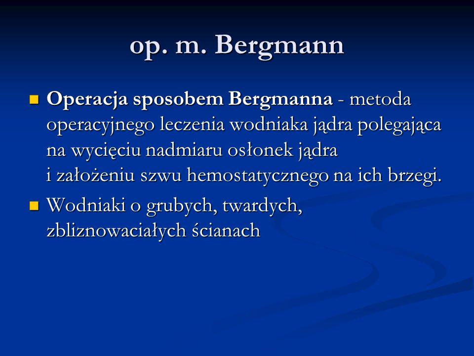 op. m. Bergmann