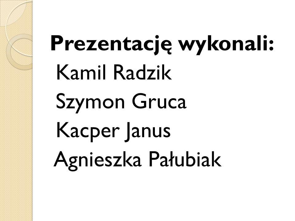 Prezentację wykonali: Kamil Radzik Szymon Gruca Kacper Janus Agnieszka Pałubiak