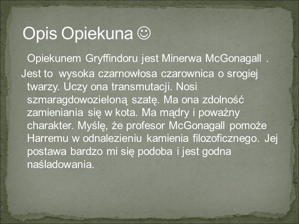 Opis Opiekuna 