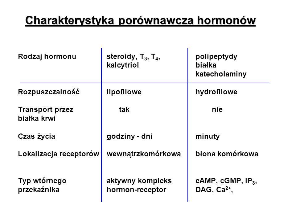 Charakterystyka porównawcza hormonów