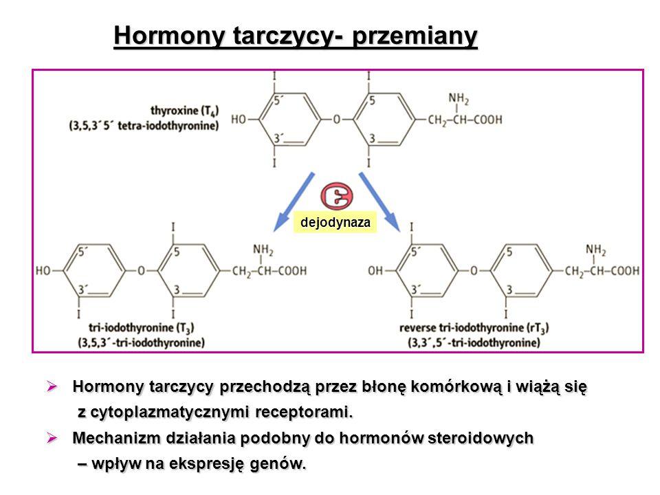 Hormony tarczycy- przemiany