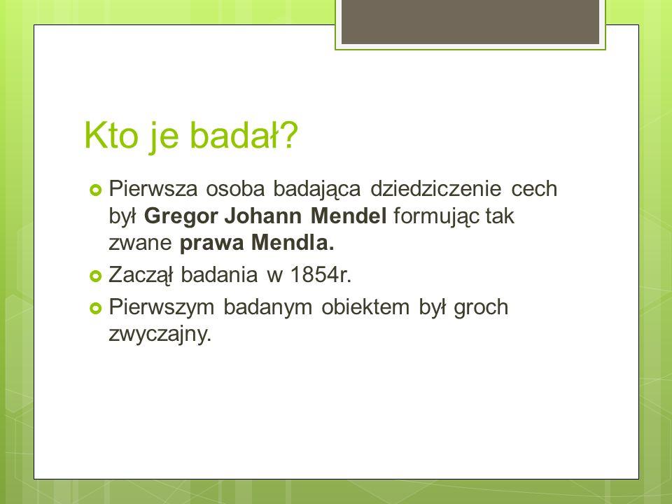Kto je badał Pierwsza osoba badająca dziedziczenie cech był Gregor Johann Mendel formując tak zwane prawa Mendla.