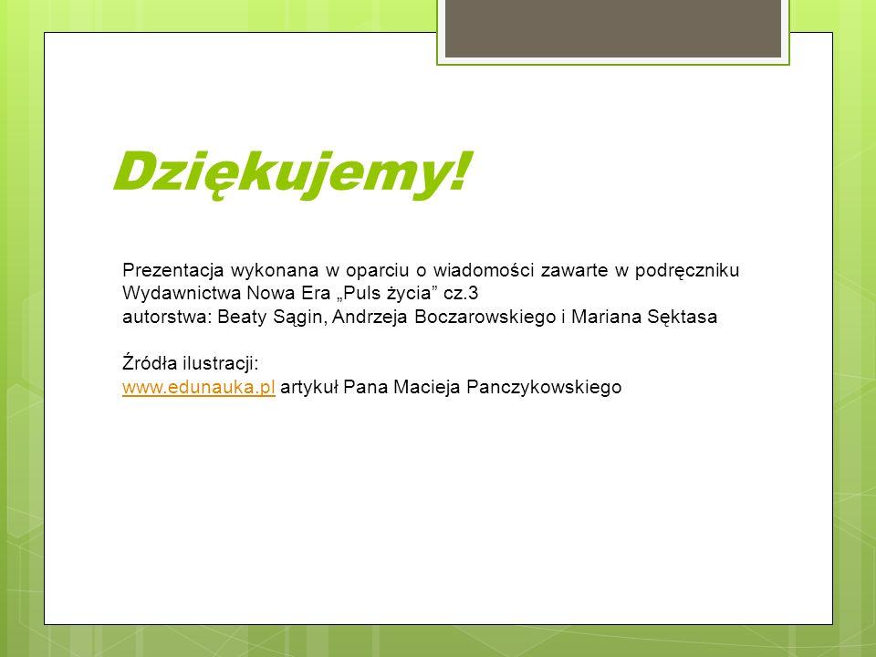 """Dziękujemy! Prezentacja wykonana w oparciu o wiadomości zawarte w podręczniku Wydawnictwa Nowa Era """"Puls życia cz.3."""