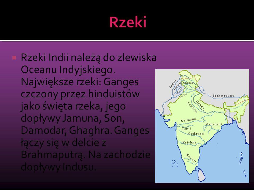 Rzeki Indii należą do zlewiska Oceanu Indyjskiego