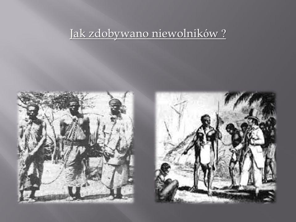 Jak zdobywano niewolników