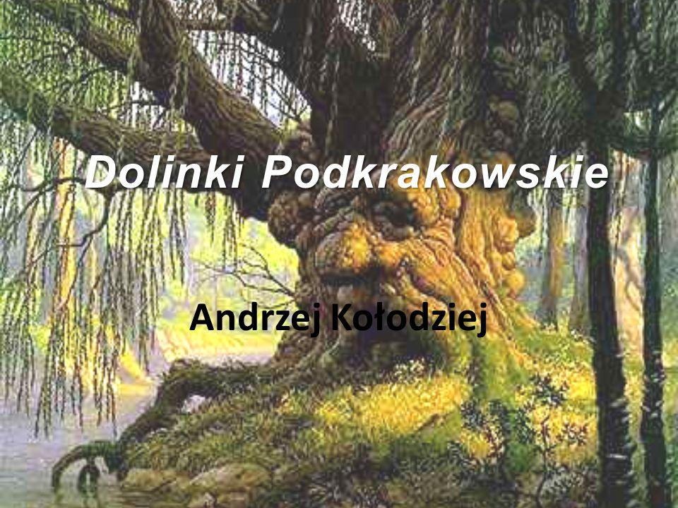 Dolinki Podkrakowskie