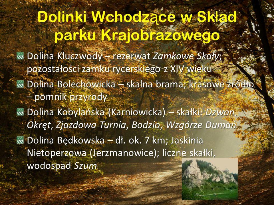 Dolinki Wchodzące w Skład parku Krajobrazowego