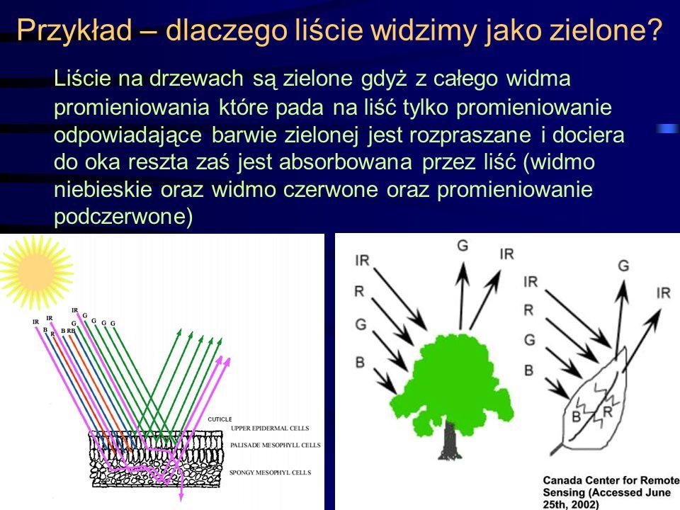 Przykład – dlaczego liście widzimy jako zielone