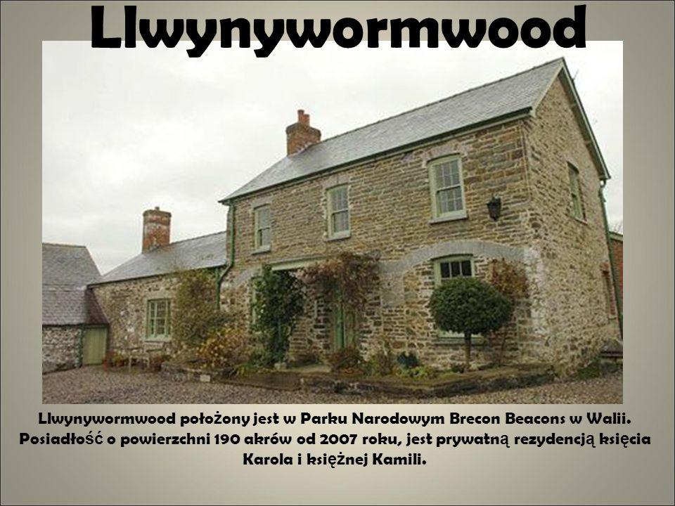 Llwynywormwood
