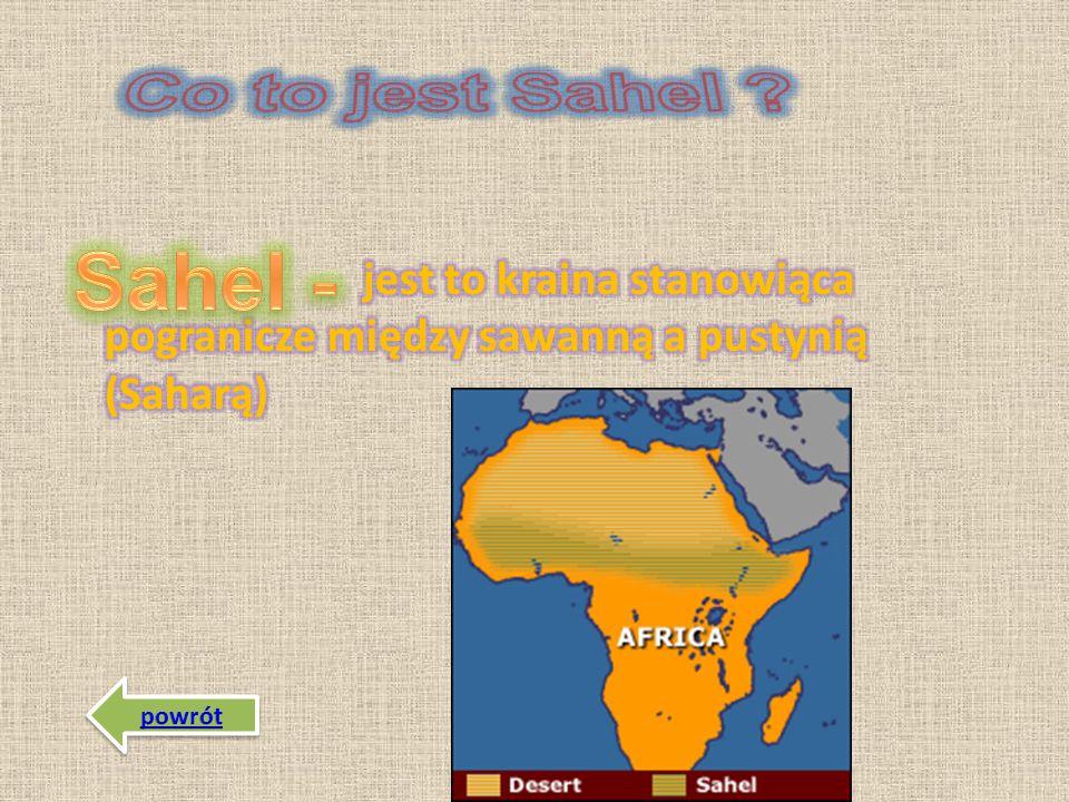 Co to jest Sahel jest to kraina stanowiąca pogranicze między sawanną a pustynią (Saharą) Sahel -