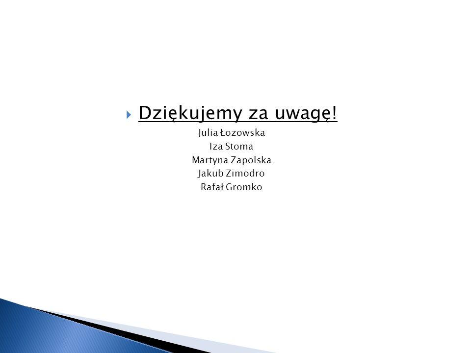 Dziękujemy za uwagę! Julia Łozowska Iza Stoma Martyna Zapolska