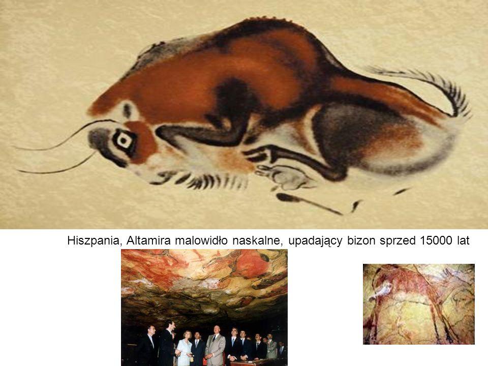 Hiszpania, Altamira malowidło naskalne, upadający bizon sprzed 15000 lat
