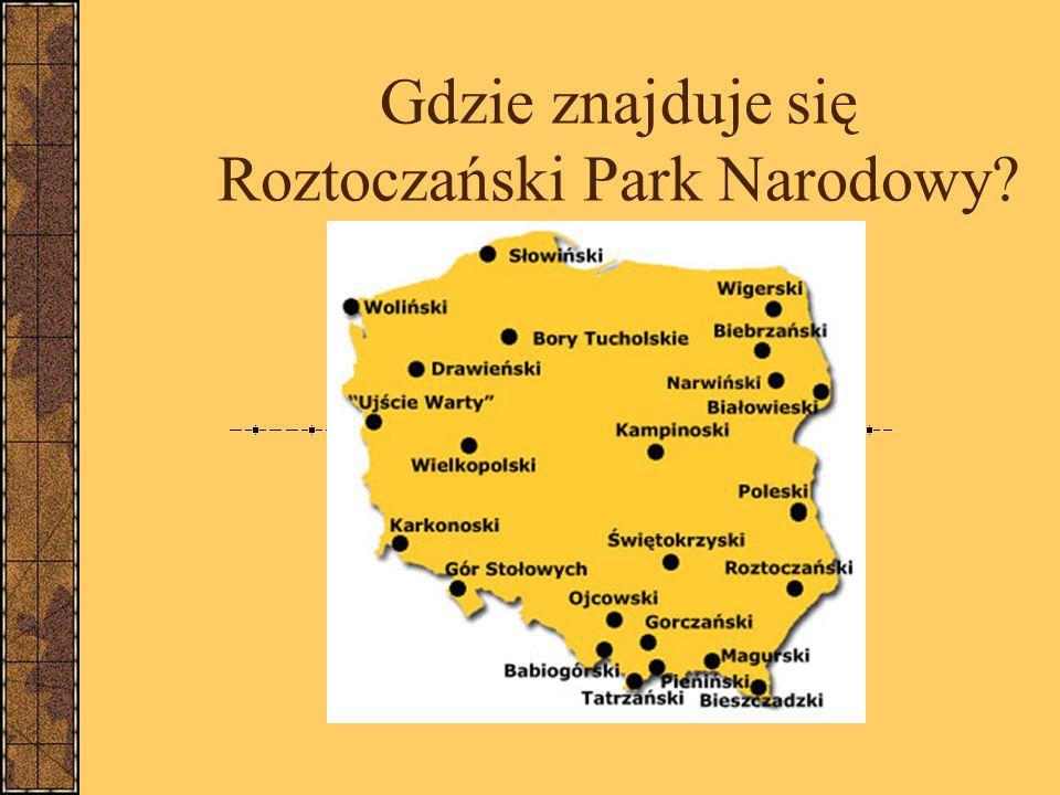 Gdzie znajduje się Roztoczański Park Narodowy