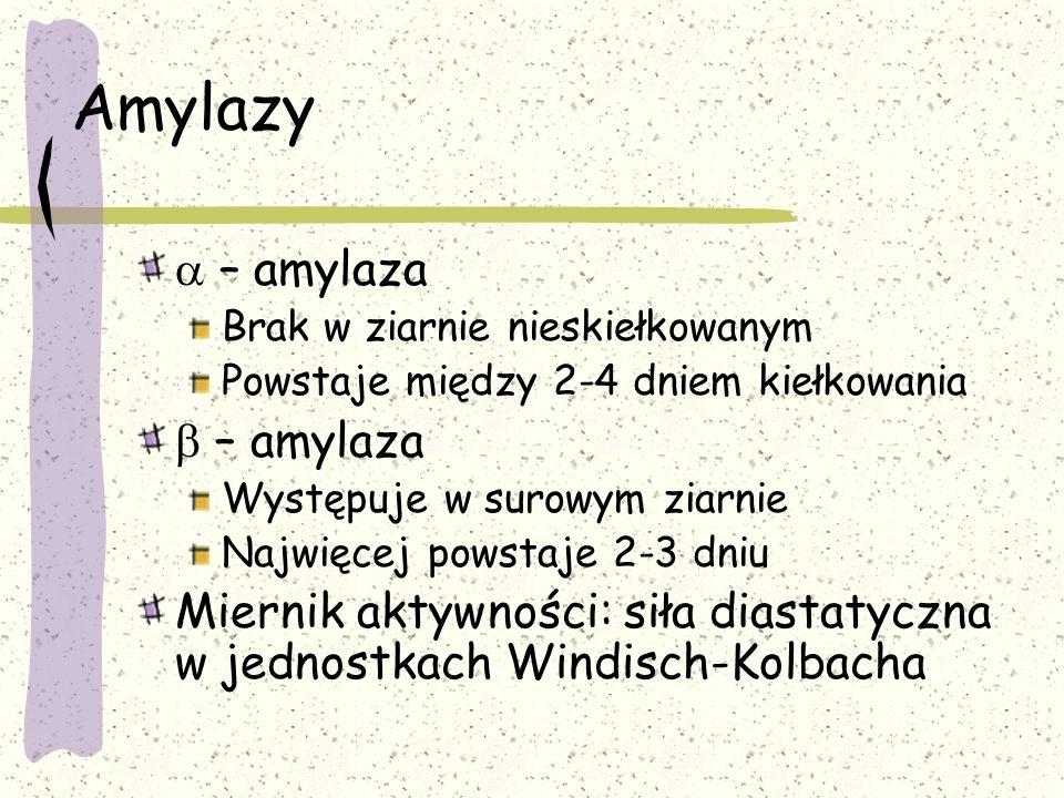 Amylazy a – amylaza b – amylaza