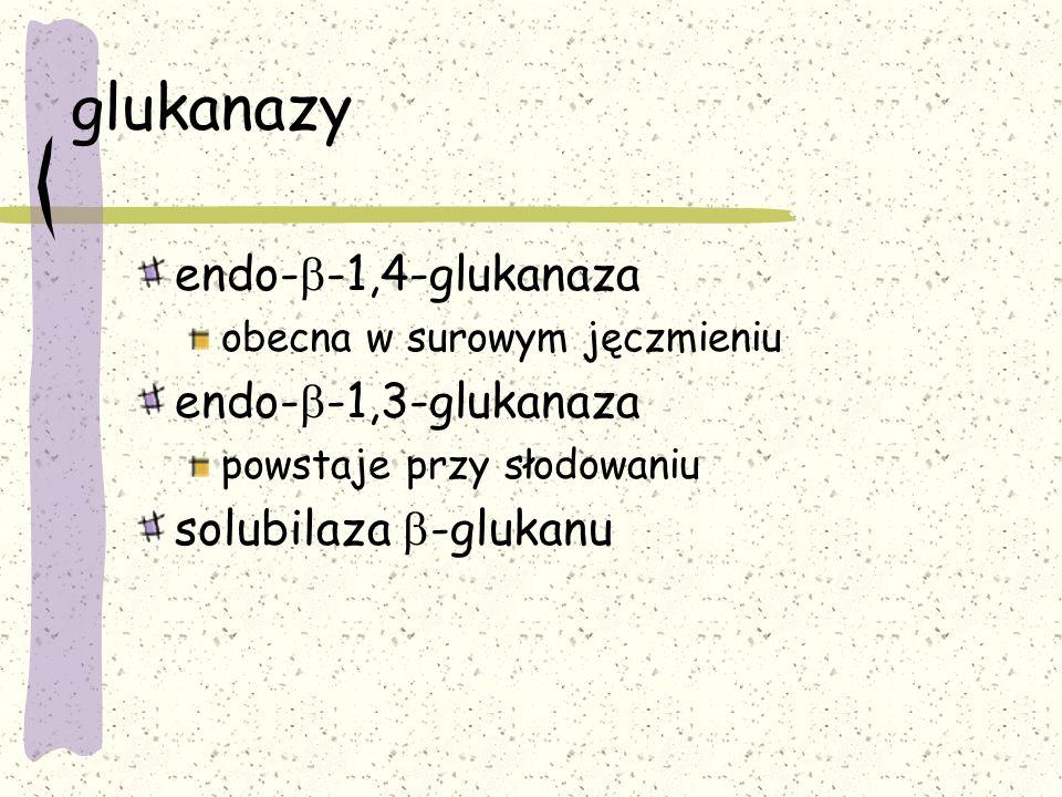glukanazy endo-b-1,4-glukanaza endo-b-1,3-glukanaza