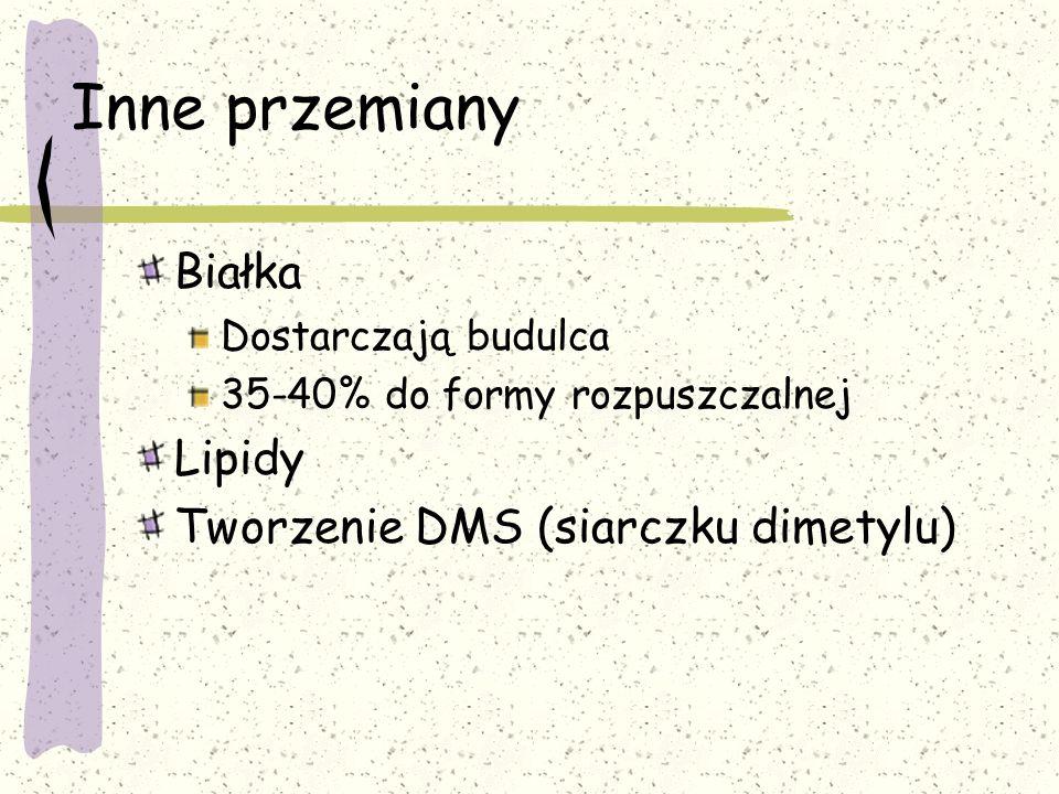 Inne przemiany Białka Lipidy Tworzenie DMS (siarczku dimetylu)