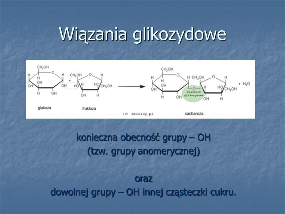 Wiązania glikozydowe konieczna obecność grupy – OH