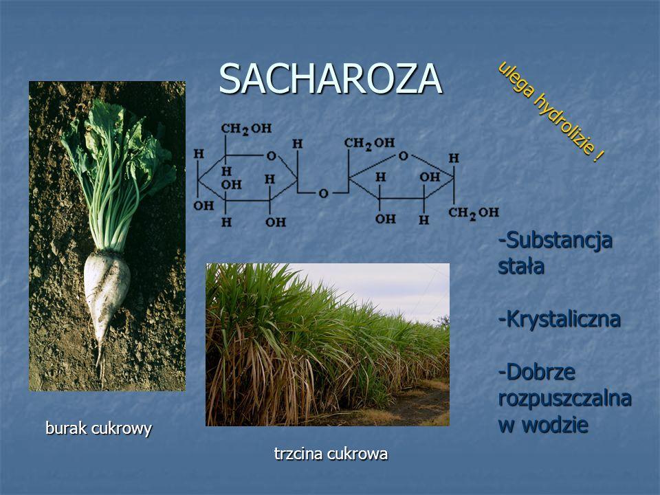 SACHAROZA -Substancja stała -Krystaliczna