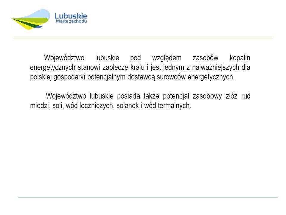 Województwo lubuskie pod względem zasobów kopalin energetycznych stanowi zaplecze kraju i jest jednym z najważniejszych dla polskiej gospodarki potencjalnym dostawcą surowców energetycznych.