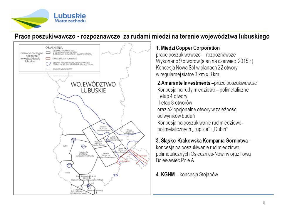 Prace poszukiwawczo - rozpoznawcze za rudami miedzi na terenie województwa lubuskiego