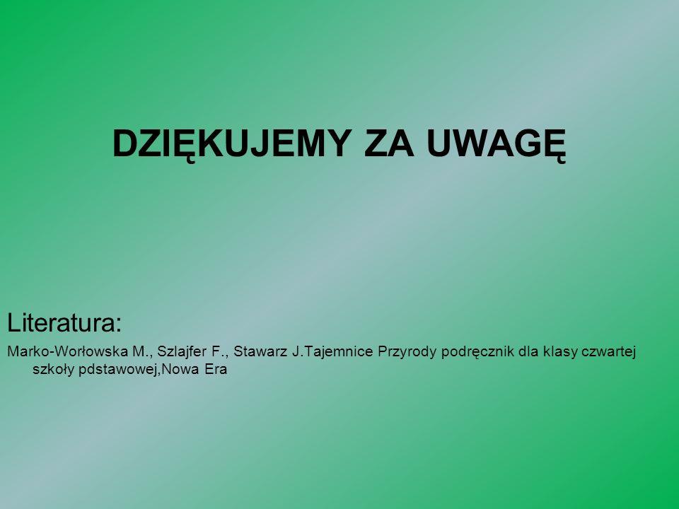 DZIĘKUJEMY ZA UWAGĘ Literatura: