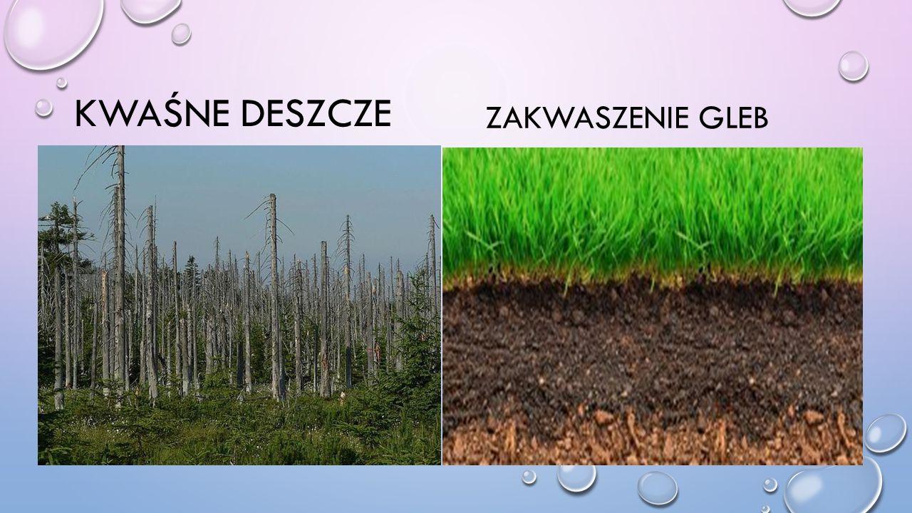 Kwaśne deszcze Zakwaszenie gleb