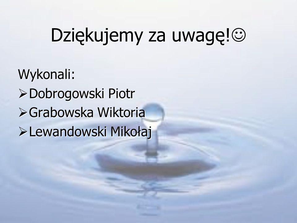 Dziękujemy za uwagę! Wykonali: Dobrogowski Piotr Grabowska Wiktoria