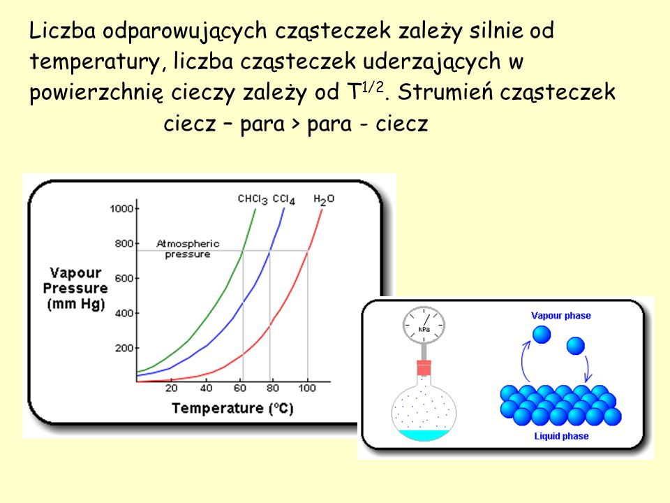 Liczba odparowujących cząsteczek zależy silnie od temperatury, liczba cząsteczek uderzających w powierzchnię cieczy zależy od T1/2. Strumień cząsteczek