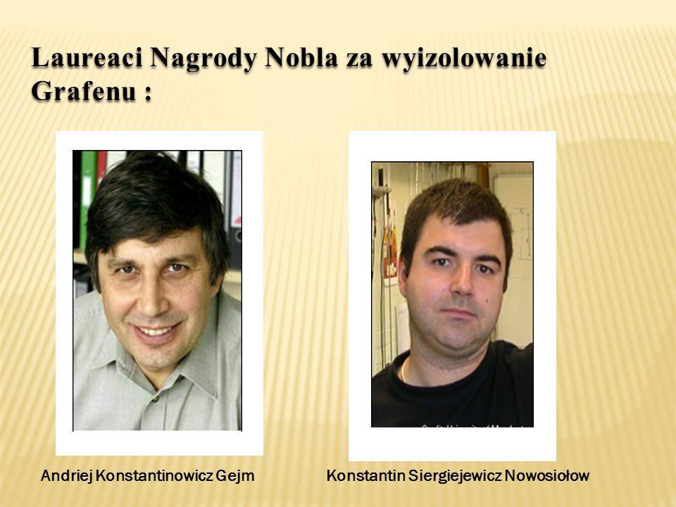 Andriej Konstantinowicz Gejm Konstantin Siergiejewicz Nowosiołow