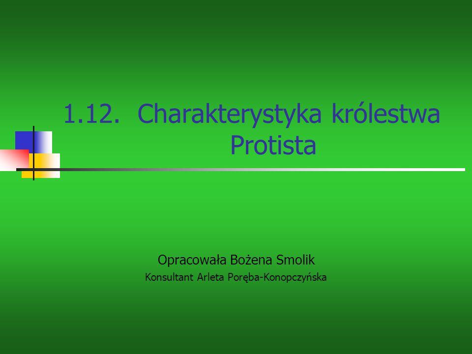 1.12. Charakterystyka królestwa Protista