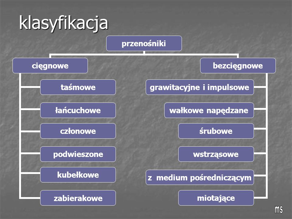 klasyfikacja ms