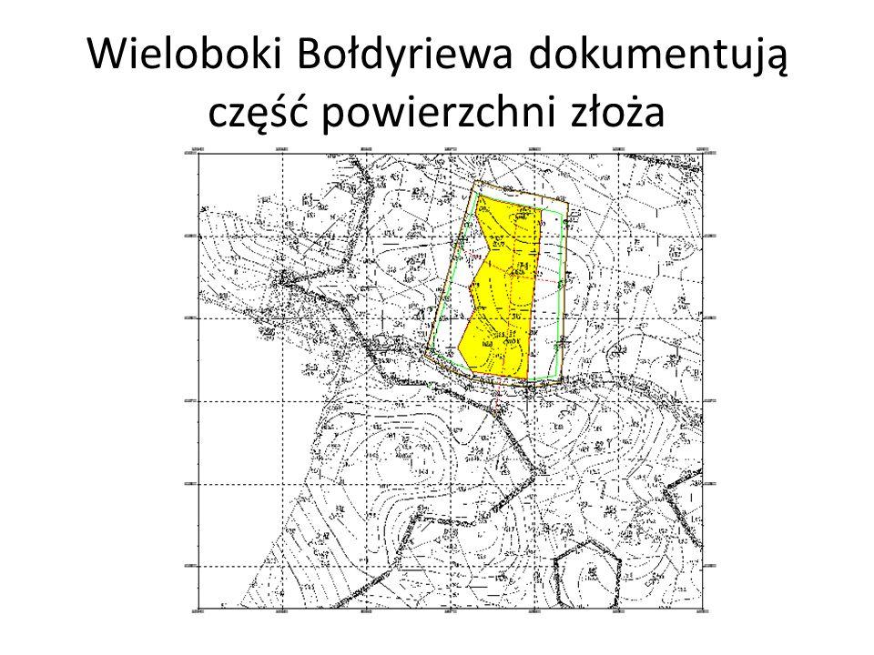 Wieloboki Bołdyriewa dokumentują część powierzchni złoża
