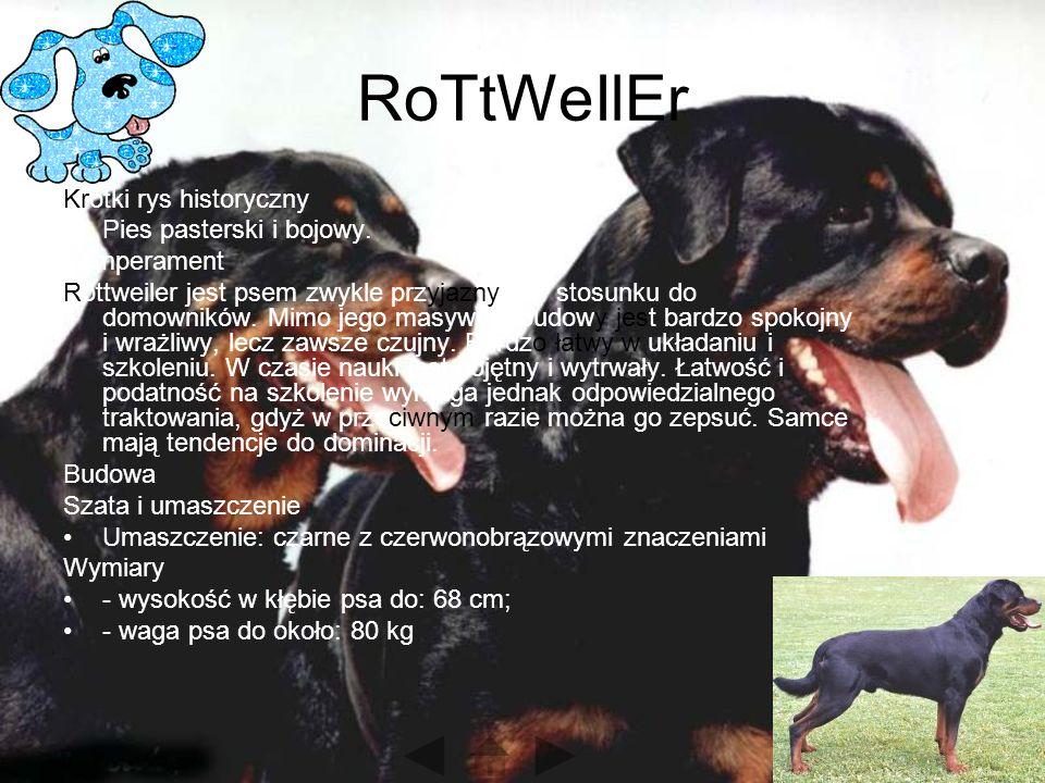 RoTtWeIlEr Krótki rys historyczny Pies pasterski i bojowy. Temperament