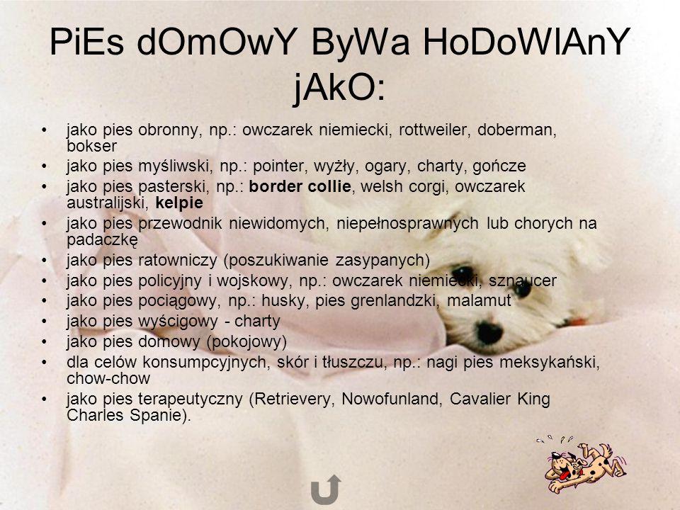 PiEs dOmOwY ByWa HoDoWlAnY jAkO: