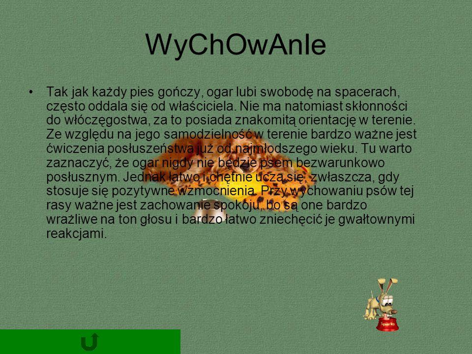 WyChOwAnIe