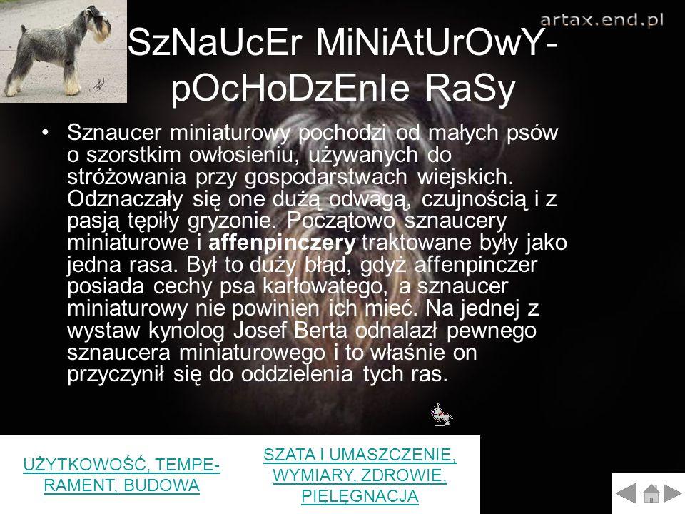 SzNaUcEr MiNiAtUrOwY- pOcHoDzEnIe RaSy