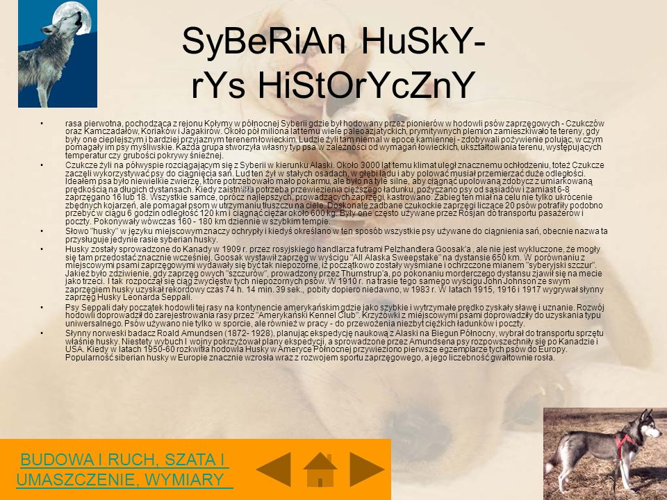 SyBeRiAn HuSkY- rYs HiStOrYcZnY
