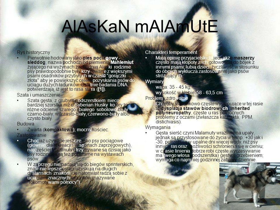 AlAsKaN mAlAmUtE Rys historyczny