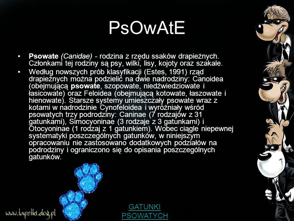 PsOwAtE Psowate (Canidae) - rodzina z rzędu ssaków drapieżnych. Członkami tej rodziny są psy, wilki, lisy, kojoty oraz szakale.